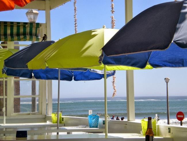 Beaches Restaurant Girl Gone