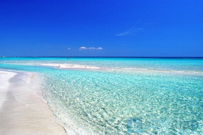 Beach in Puglia